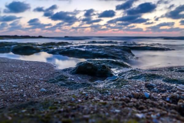 צילום חוף הים פלמחים
